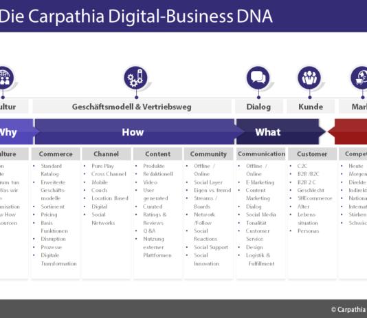 Carpathia Digital-Business DNA - (c) Carpathia AG