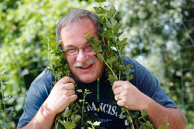 Schweizer Pflanzenanbieter Lubera goes UK