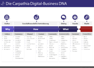 Carpathia Digital-Business DNA - (c) Carpathia AG
