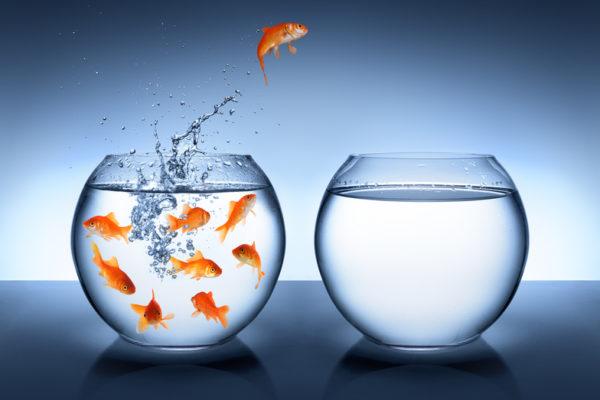 Mein Wunsch: Mehr Mut im Schweizer Retail oder so wie Siroop & Co.